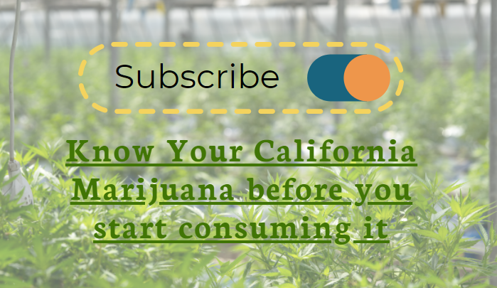 Know Your California Marijuana before you start consuming it